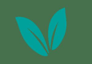 Hisense Eco Mode